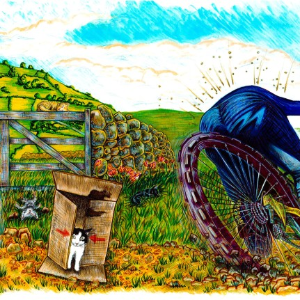 Jimmy the cat children's book illustration wales welsh animals bikes watercolour pencil traditional